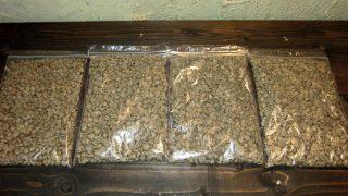生豆のサンプル